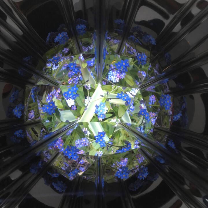 View of flowers through kaleidoscope