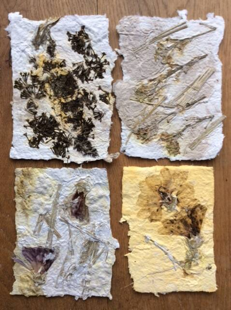 Paper making with Mary Frances Trust