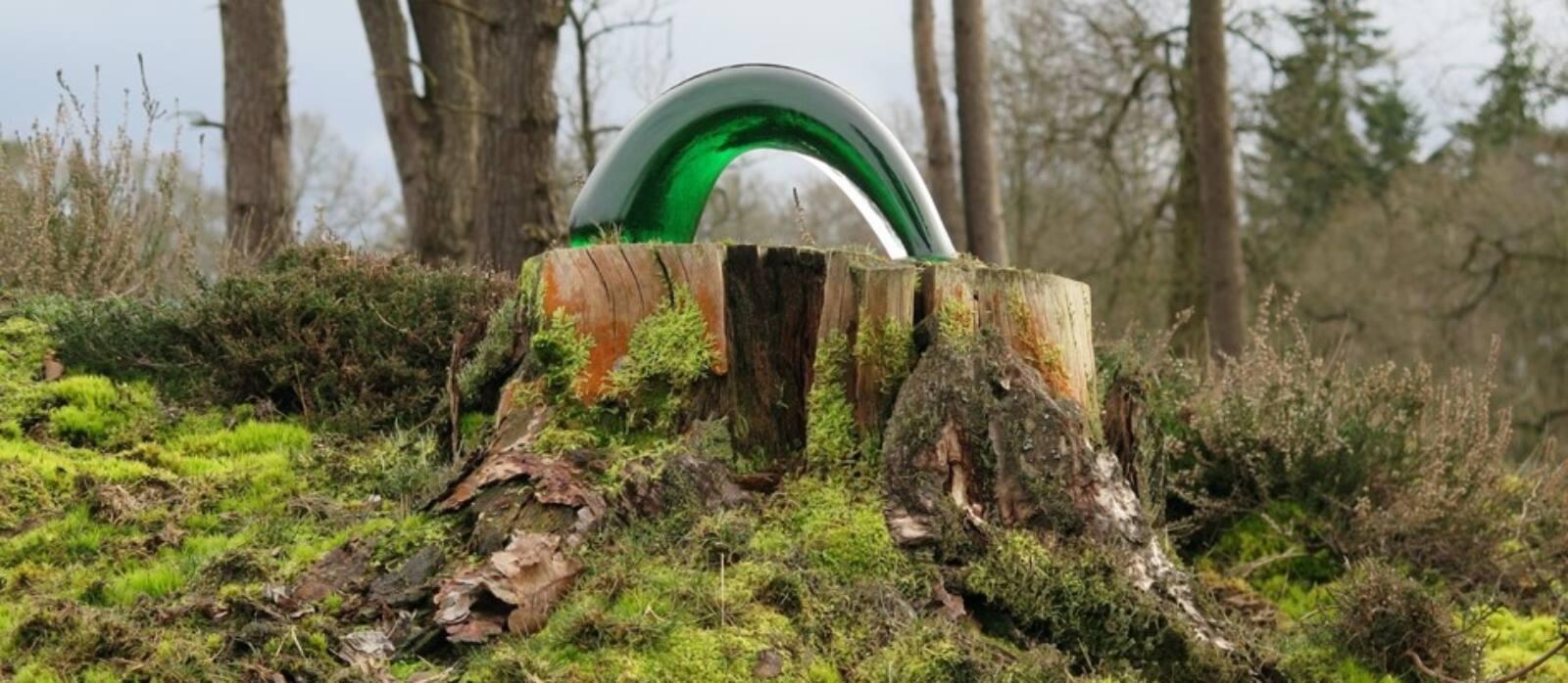 Green Line by Irina Prolygina