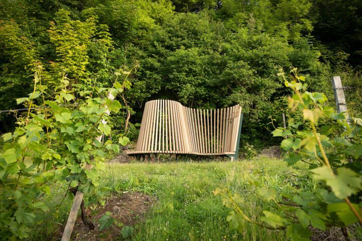 Radius by James Tunnard through the vines