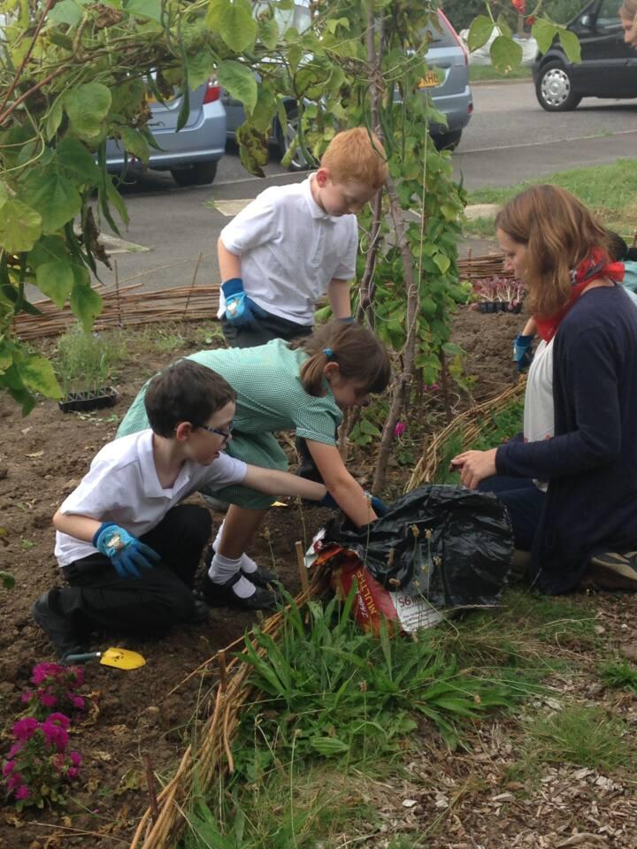 Spelthorne garden workshops 2