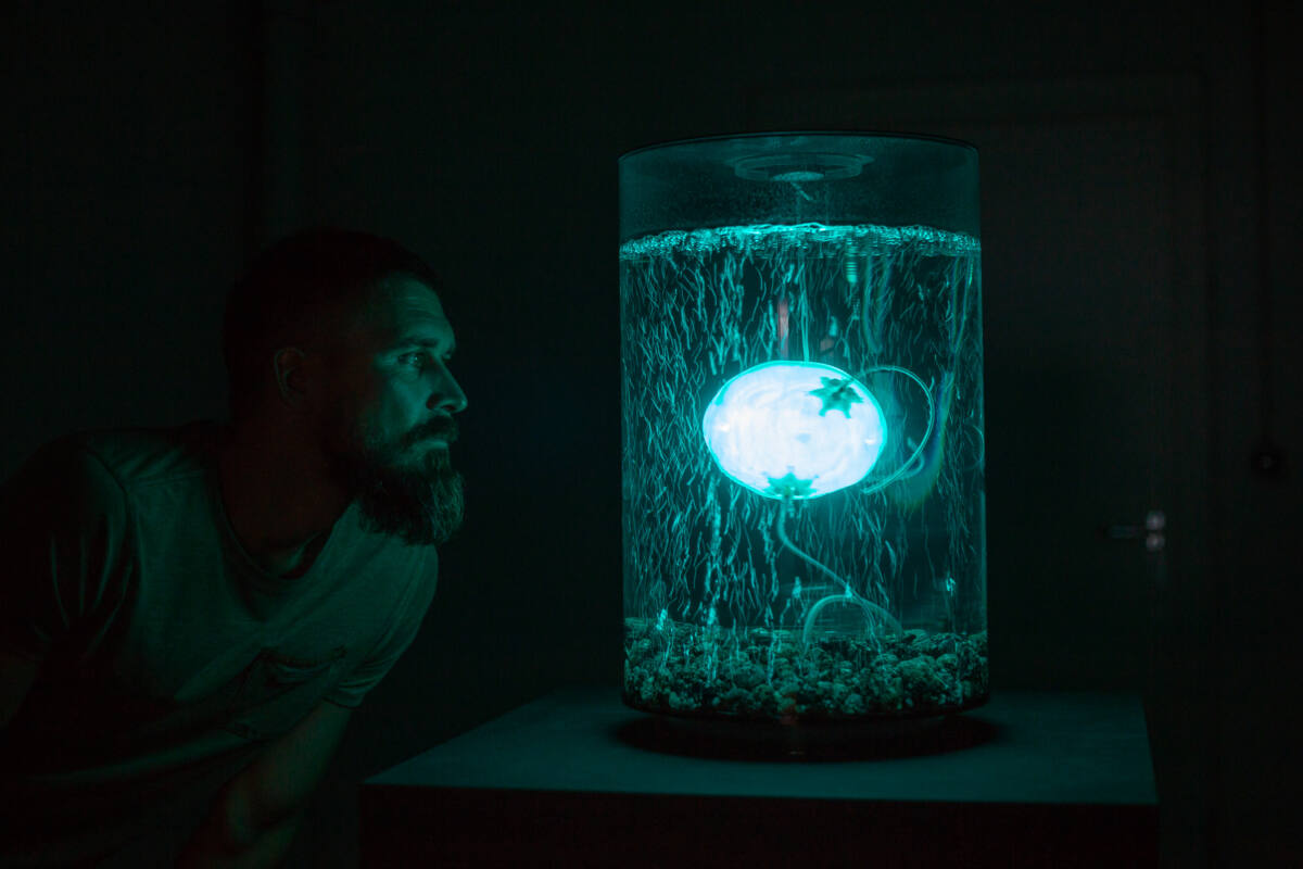 ArchaeaBot by Anna Dumitriu and Alex May Photo credit Vanessa Graf - Ars Electronica 2018